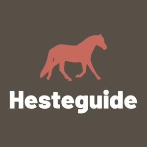 Hesteguide